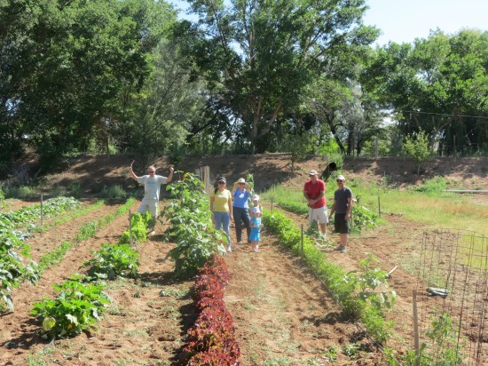 Tending the Community Garden (Run by Estrella Del Norte Vineyard) During our New Mexico Sit