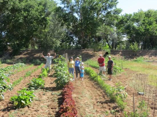 Tending the Community Garden (Run by Estrella Del Norte Vineyard) During our New Mexico Sit