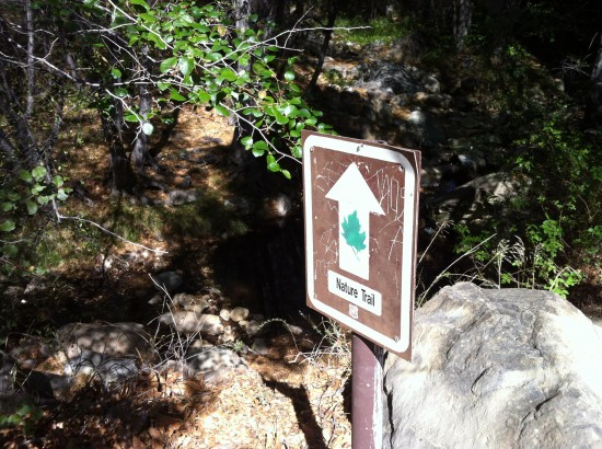 Weekly Hikes