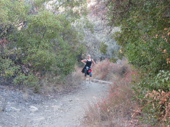 Lynn Hiking Horn