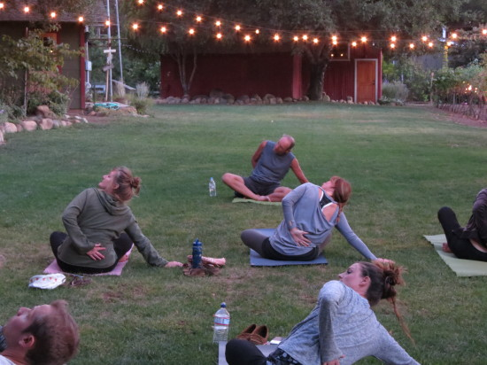 Yoga and Wine at Majestic Oak Vineyard